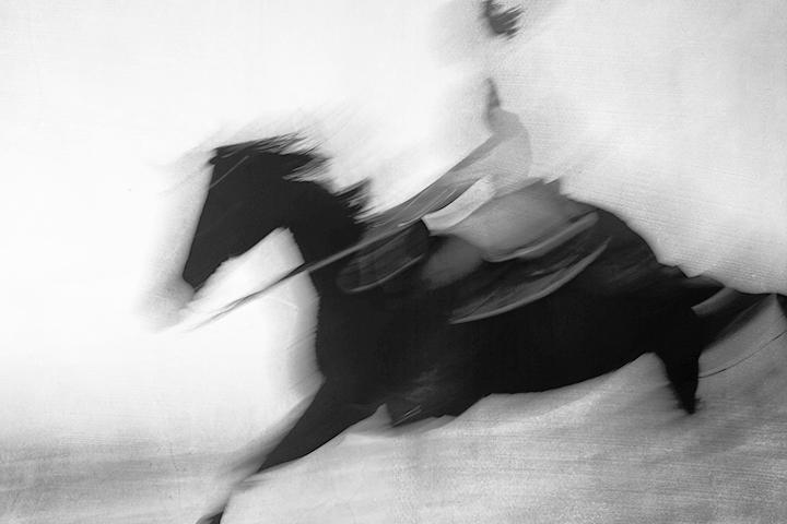 Horse on the Beach #5 2017-11-18