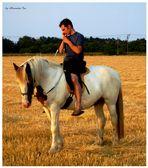 Horsemanship ... riding man don´t give up business