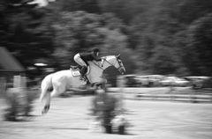Horsepower in Motion 2