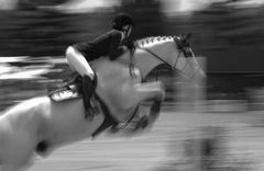 Horsepower in Motion