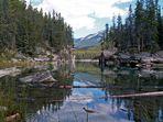 Horseshoe Lake - Jasper, Alberta