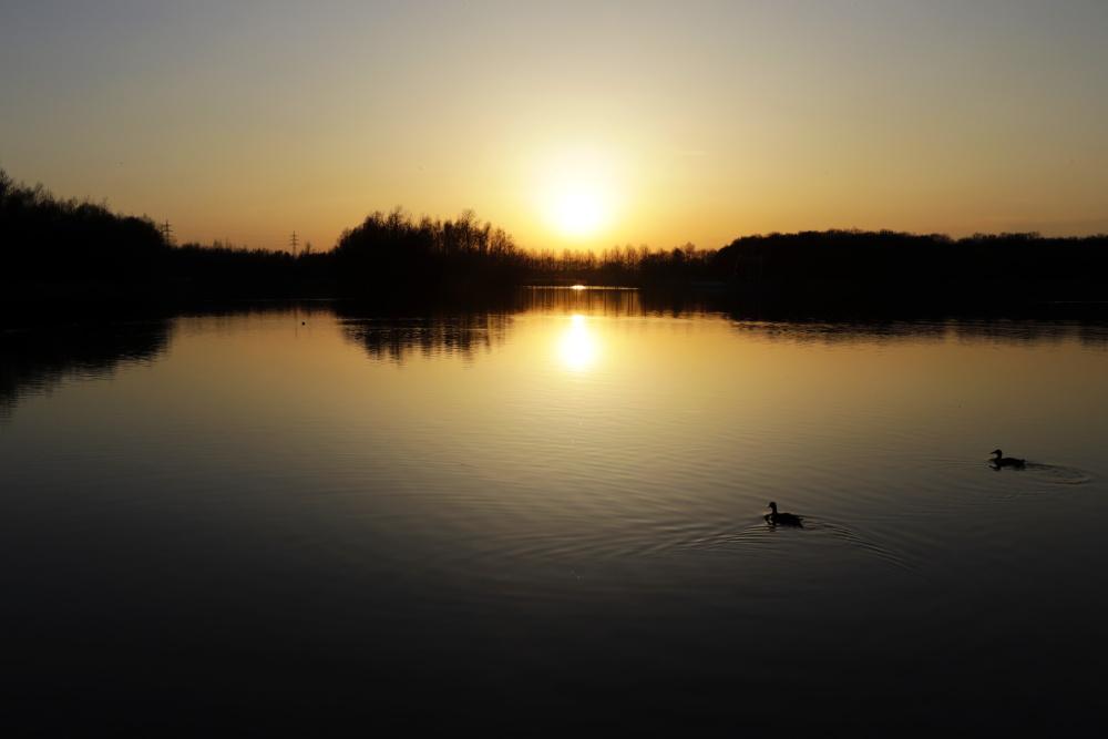 Horstmarer See - Bild 1