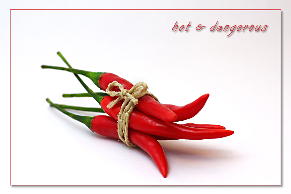 hot & dangerous 2