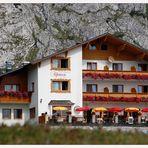*Hotel Alpenrose*