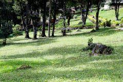 Hotel Cabeça de Boi - Monte Verde - MG