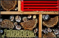 ****-Hotel für Biene Maja & Co.