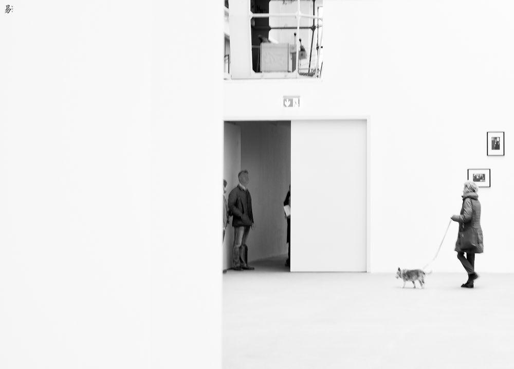 hound.dog.art