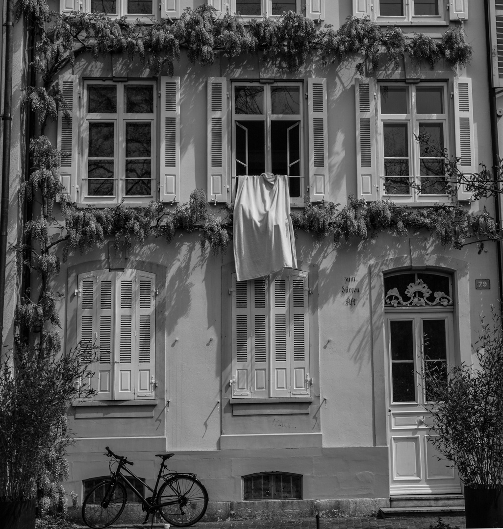 Housefront in town