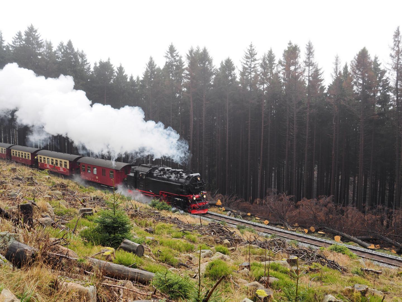 HSB Harzer Schmalspurbahn