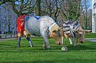 HSV - FC St.Pauli