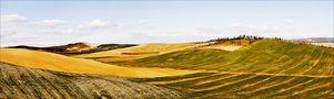 Hügel in der Toskana von fotopa
