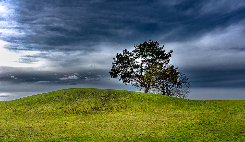 Hügel:Baum (Hill:Tree)