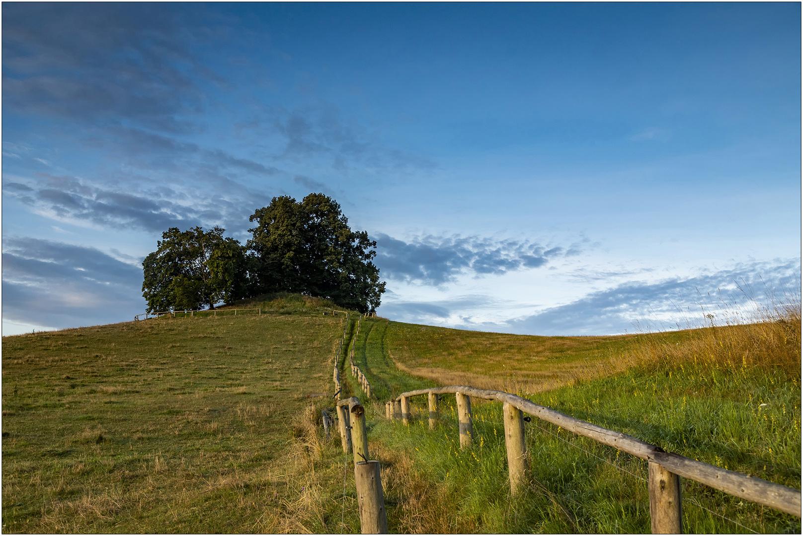 Hügelgrab bei Wustrow