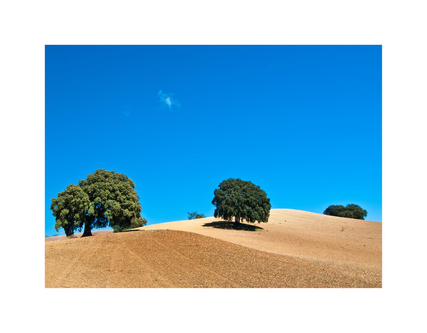 Hügelland - braun und blau