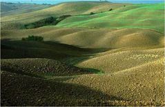Hügellandschaft i. d. Toskana