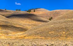 Hügellandschaft im Lamar Valley, Wyoming, USA