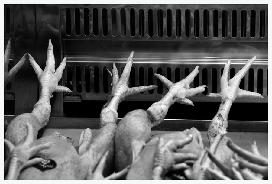 Hühnerbeine ....
