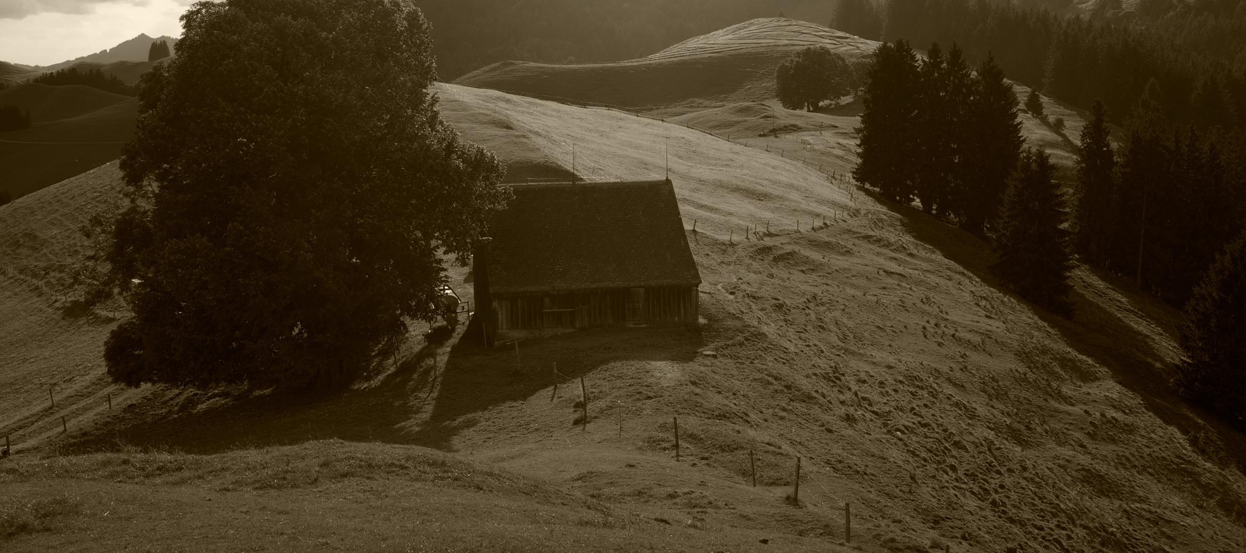 Hütte auf dem Alm