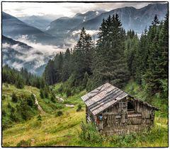 Hütte im Birkental