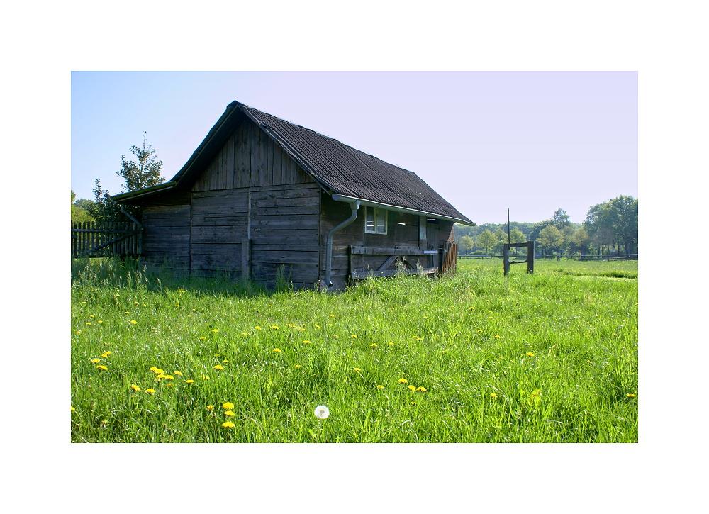 Hütte im Grünen