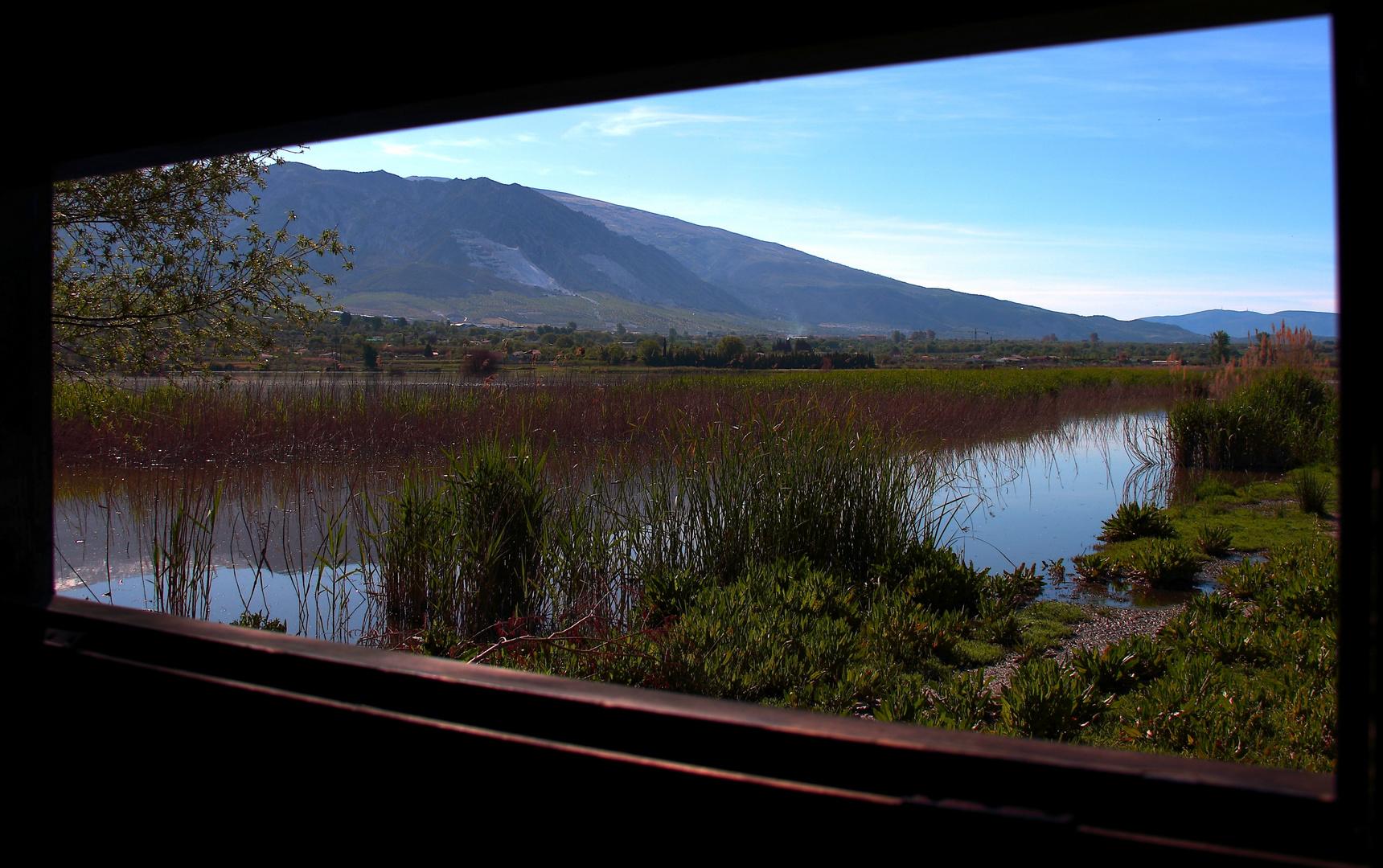 Humedal de El Padul (Granada)