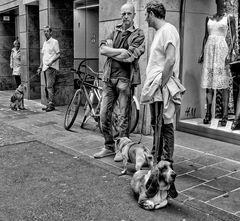 Hundepause