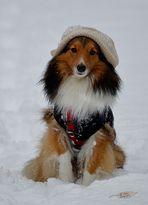 Hurra - Schnee ist da:-))))