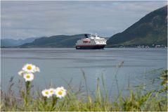 Hurtigrute NORDNORGE