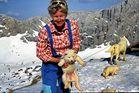 Husky Nachwuchs auf der Symony Hütte