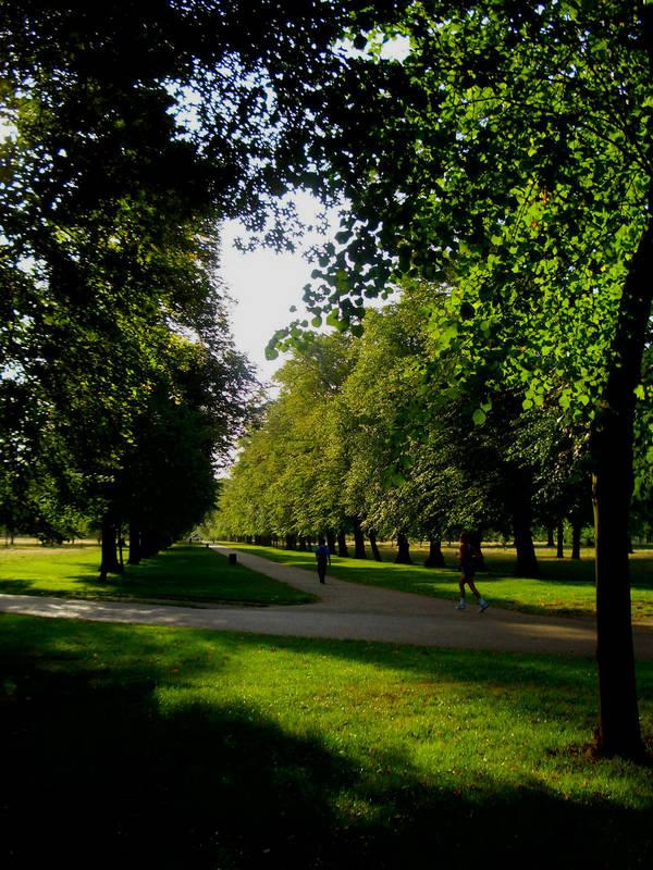 Hyde Parc...