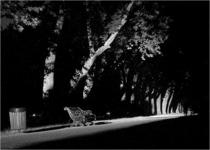 Hyde Park at midnight