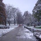 hyde park in white_5