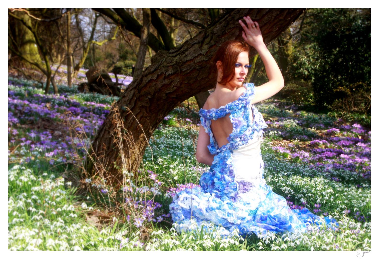 hydrangea fairy tale 2
