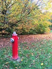 Hydrant in der Natur