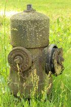 Hydrant in Hoyerswerda