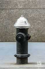 Hydrant New York
