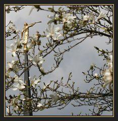 Hymne an den Frühling