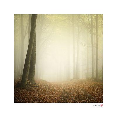Herbst Farben Fotos & Bilder auf fotocommunity