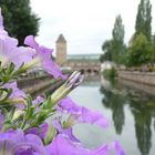 I canali di Strasburgo