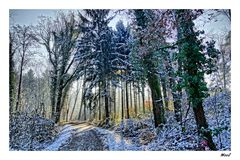 .... I colori della neve.....