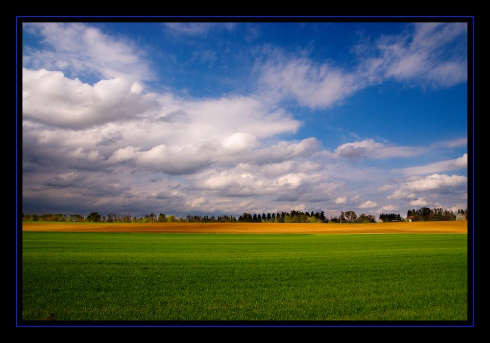I colori della pianura del piemonte foto immagini for Colori del rivestimento della baracca