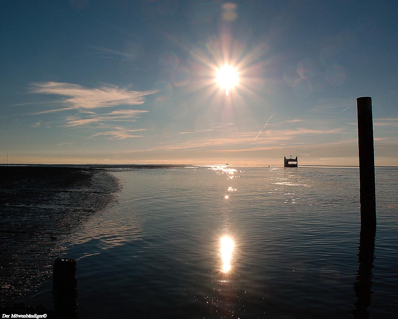 I follow the sun und Euch allen ein sonniges Vorostern - Wochenende