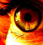 I keep my big black eye on you