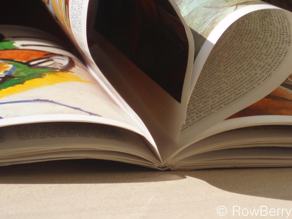 I (L) READ A BOOK