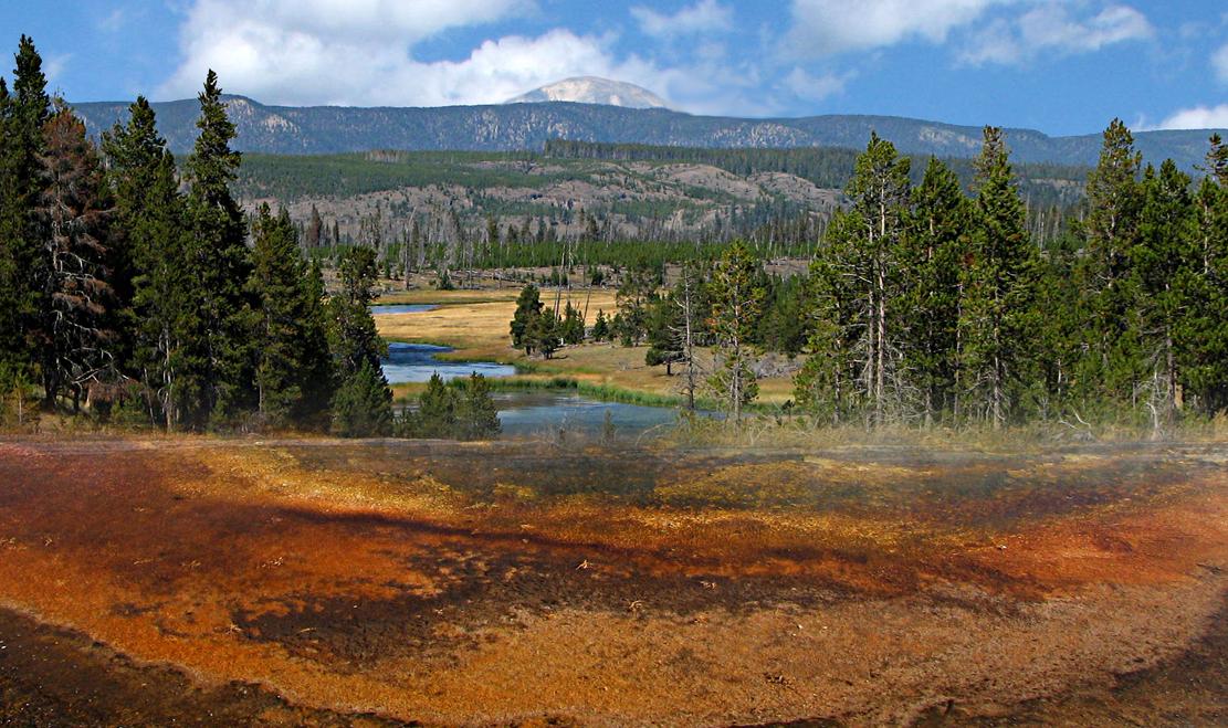 I love the Yellowstone N.P.