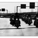 _I lupi dei Climiti on the Road_