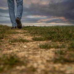 I walk the line   -    Ein Weg entsteht wenn man ihn geht.