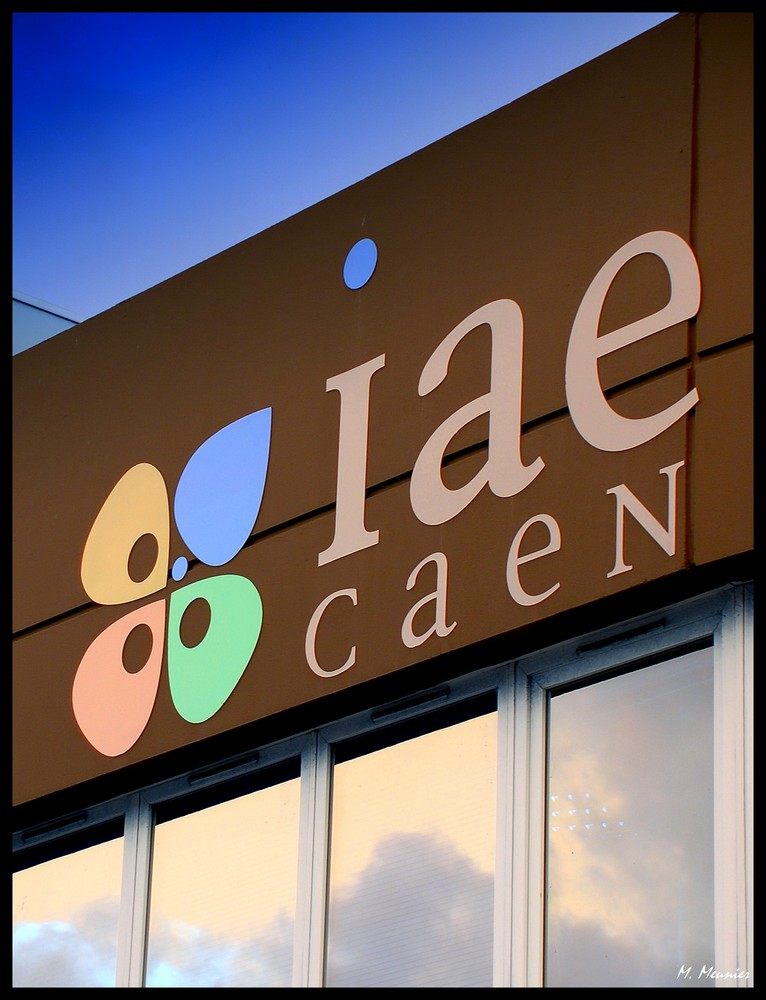 - IAE de CAEN -