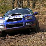 IBA Group - Subaru