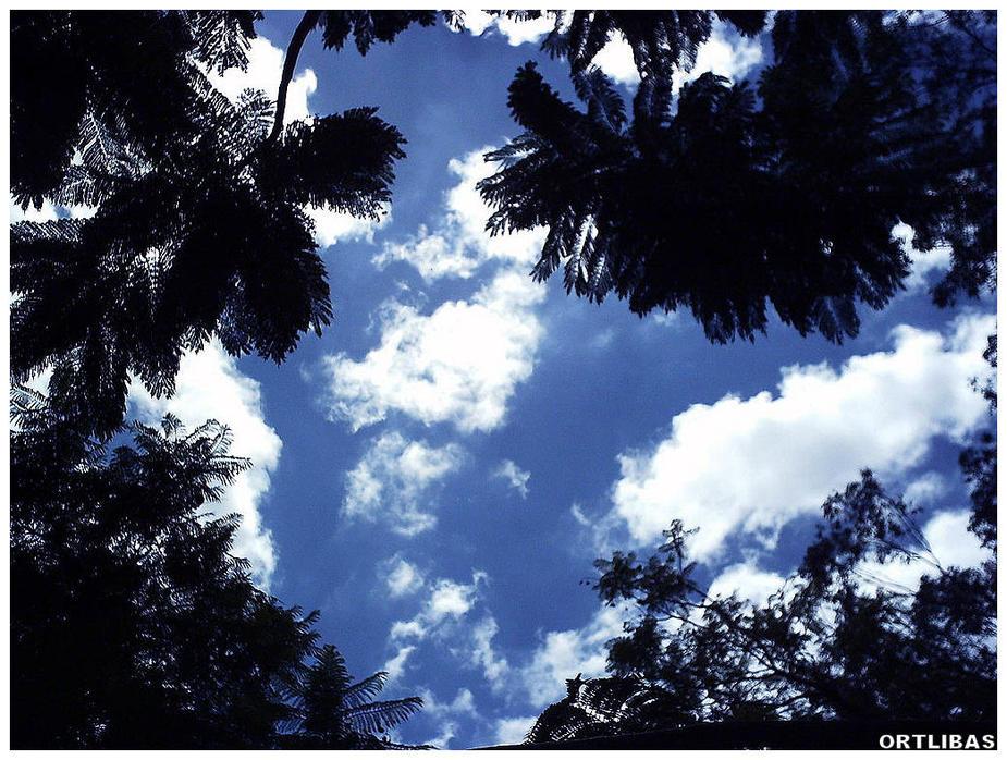 Ibirapuera Wolken
